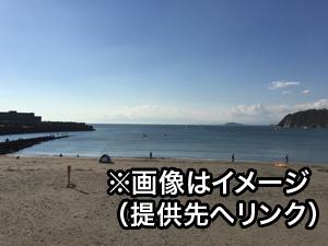 カメラ 磯ノ浦 ライブ